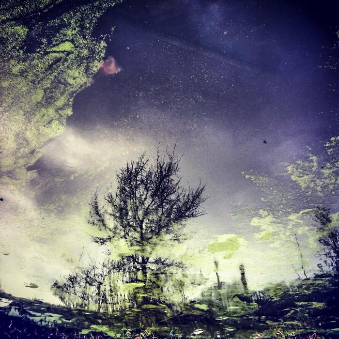 iphone, musardises, paysage, reflet, reflet eau, SaintGilles, SaintGillestelephone, telephone, ville01